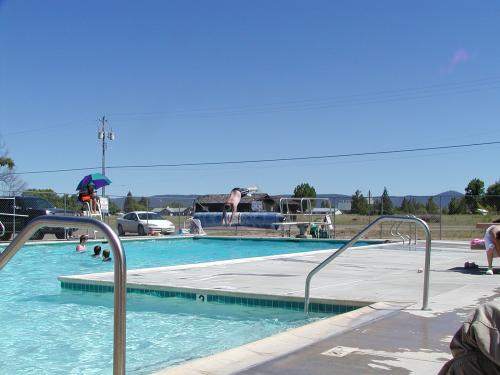 A picture of the pool with kids swimming and a bice dive off the diving board.